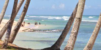 paradise beach sri lanka