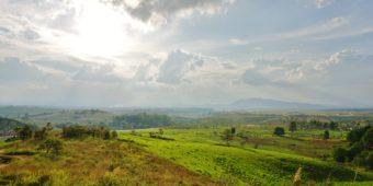 lush landscape laos