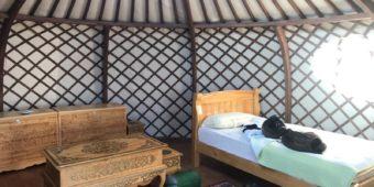 nomad yurt mongolia
