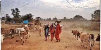 rural scene madhya pradesh