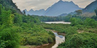 lush nature laos
