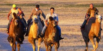 camel riding mongolia