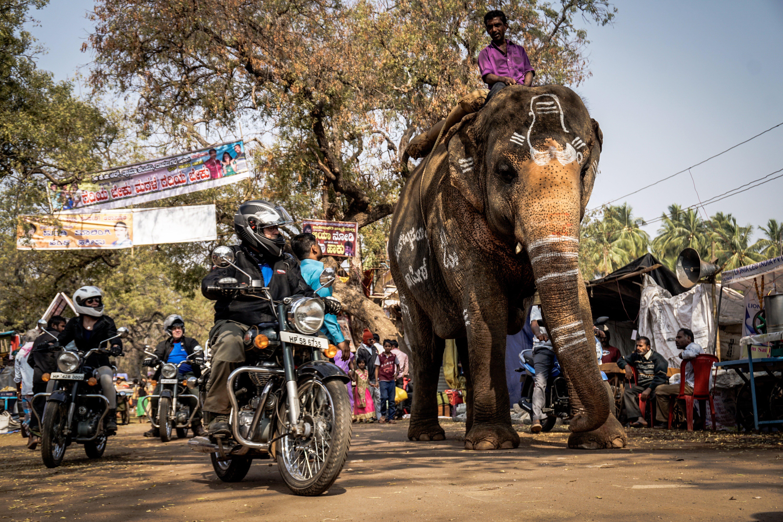 Motorcycle tour India  Southern India