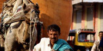 indian street life rajasthan