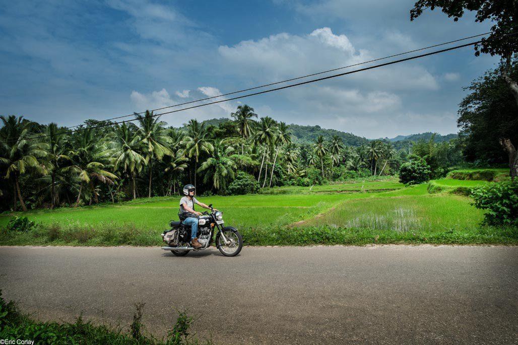 Motorcycle road trip Sri Lanka - The White Gold of Ceylon