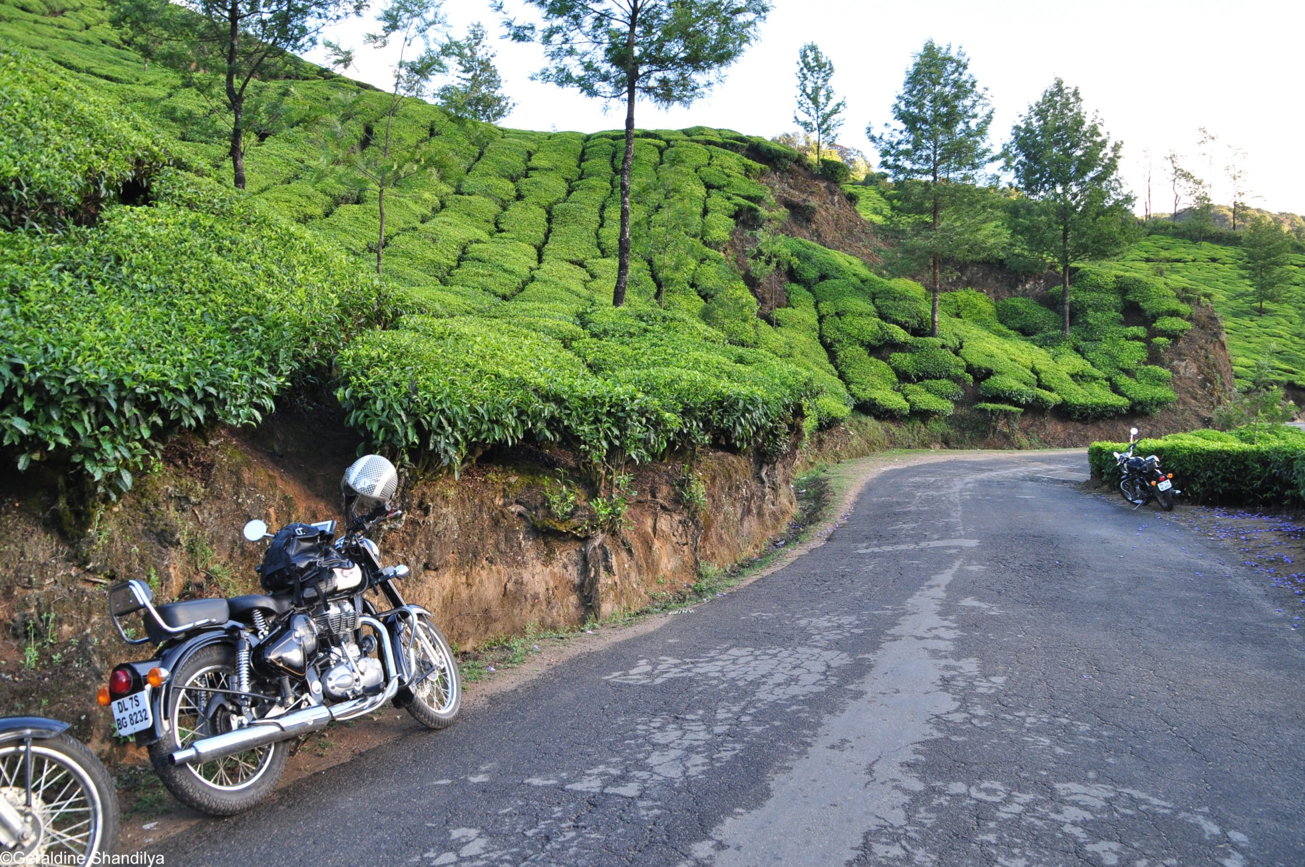 Motorcycle road trip India / Southern India - The Spices Route
