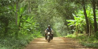 royal enfield jungle thailand