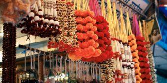 flowers india