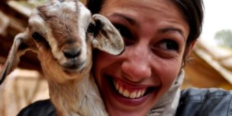 woman lamb india