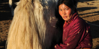 local mongolia
