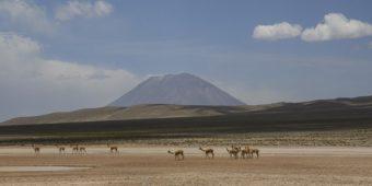 landscape desert in peru