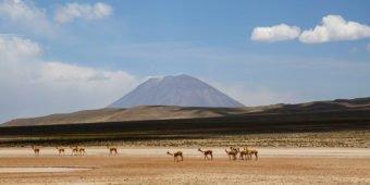 desert landscape peru