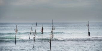 sri lanka stilt fisherman